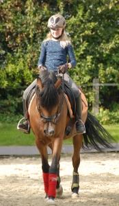 Reitunterricht für Kinder und Jugendliche auf eigenem Pferd oder Pony